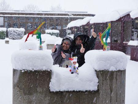 Winterliche Grüße / © Weltgymnaestrada 2019